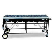 6' Propane Grill $125/day $375/week